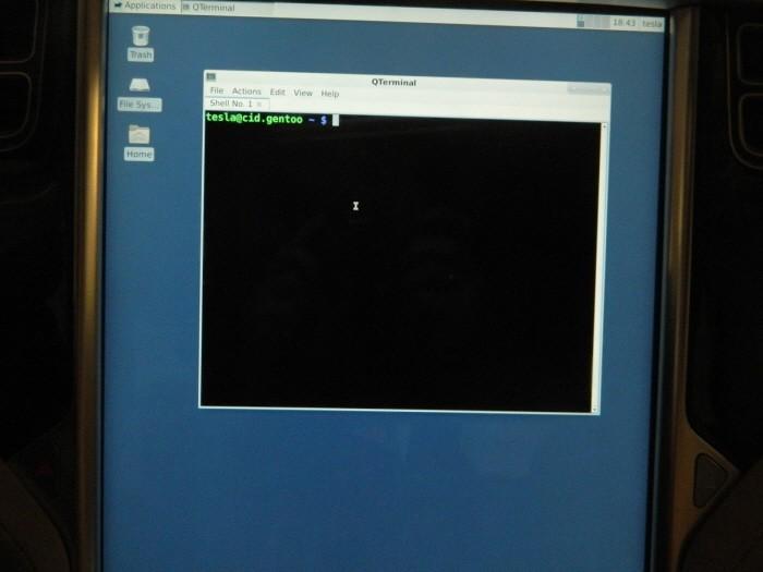 Gentoo_Tesla_160428_2.jpg